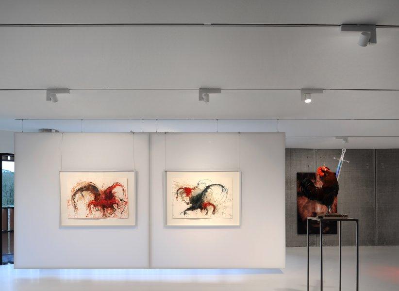 CosmopOlitan gallery